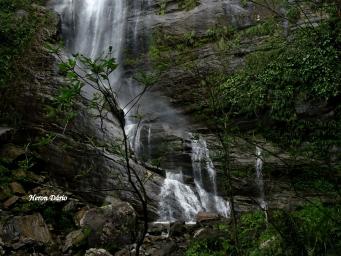 Cachoeira do Esguicho. Sertão de Mambucaba – A. Reis-RJ